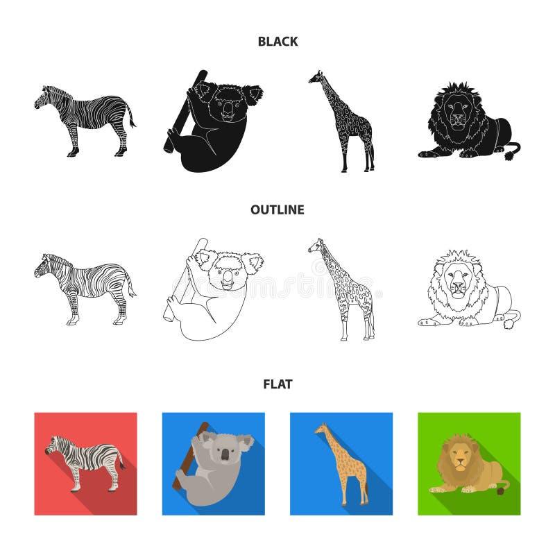 Afrykańska zebra, zwierzęca koala, żyrafa, dziki drapieżnik, lew Dzikie zwierzę ustawiać inkasowe ikony w kreskówce projektują we ilustracja wektor
