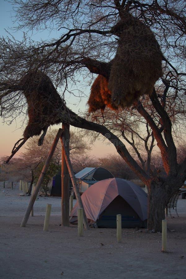 Afrykański camping obraz royalty free
