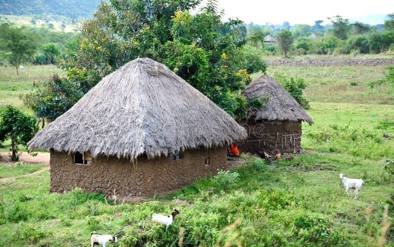 afrykański dom zdjęcia royalty free