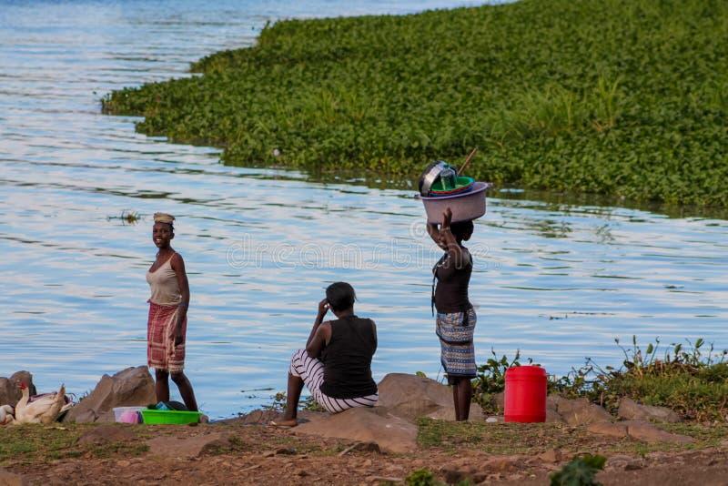 Afrykański kobiety obmycie odziewa na brzeg jezioro wiktorii obraz royalty free