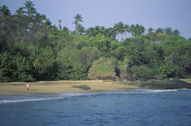 Afrykański mężczyzna odprowadzenie na tropikalnej plaży fotografia royalty free