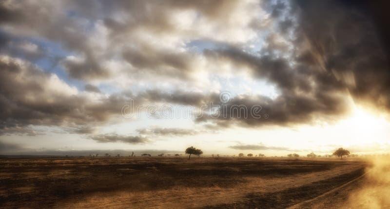 afrykański obszar trawiasty fotografia stock