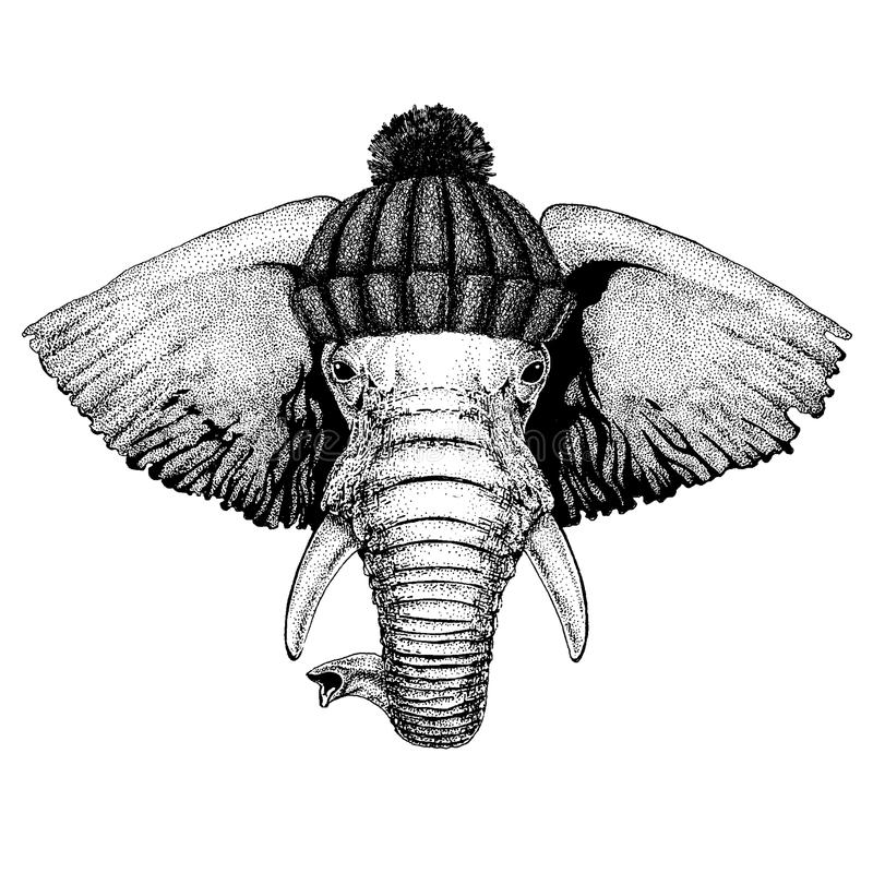Afrykańskiego lub indyjskiego słonia Chłodno zwierzę jest ubranym trykotowego zima kapelusz Ciepła pióropuszu beanie bożych narod ilustracji