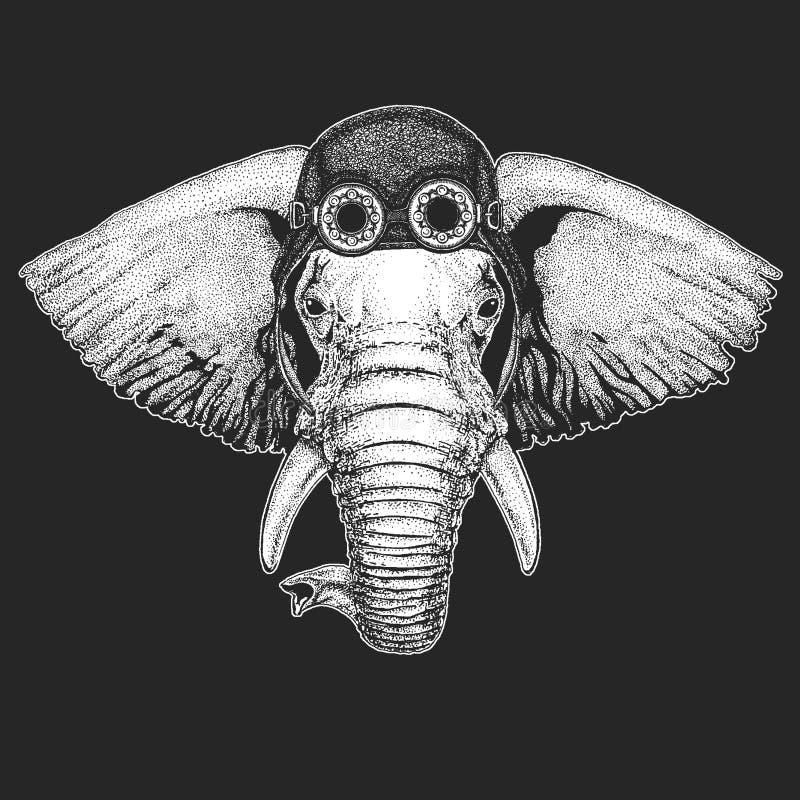 Afrykańskiego lub indyjskiego słonia ręka rysująca ilustracja dla tatuażu, emblemat, odznaka, logo, łata, koszulki Chłodno zwierz ilustracji