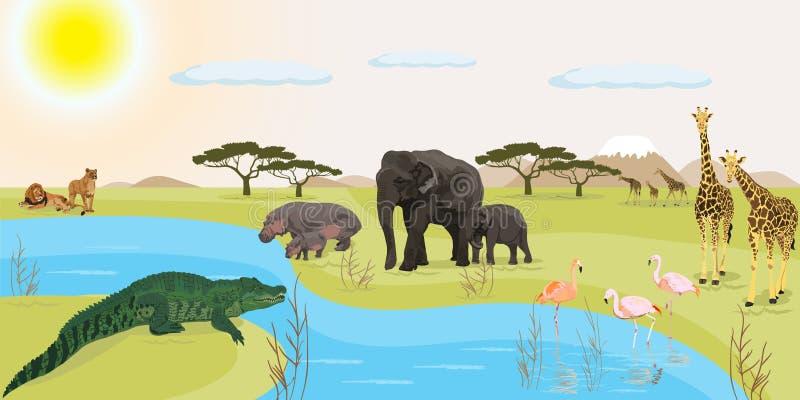 Afrykanin krajobrazowa wektorowa ilustracja ilustracji