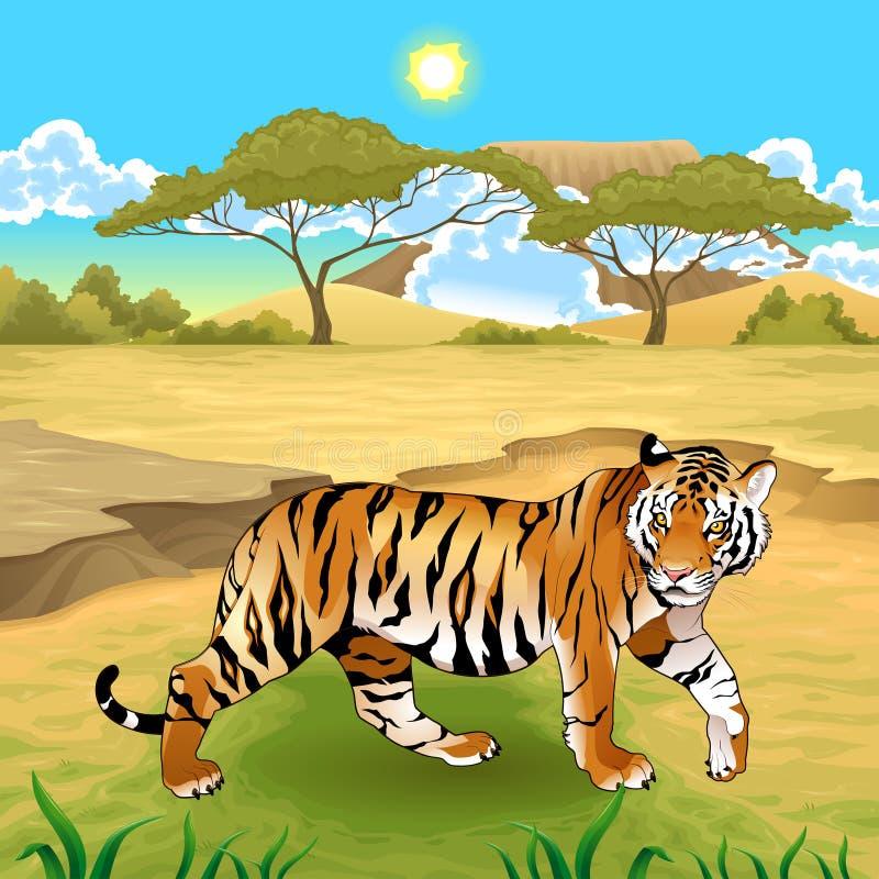 Afrykanina krajobraz z tygrysem ilustracja wektor