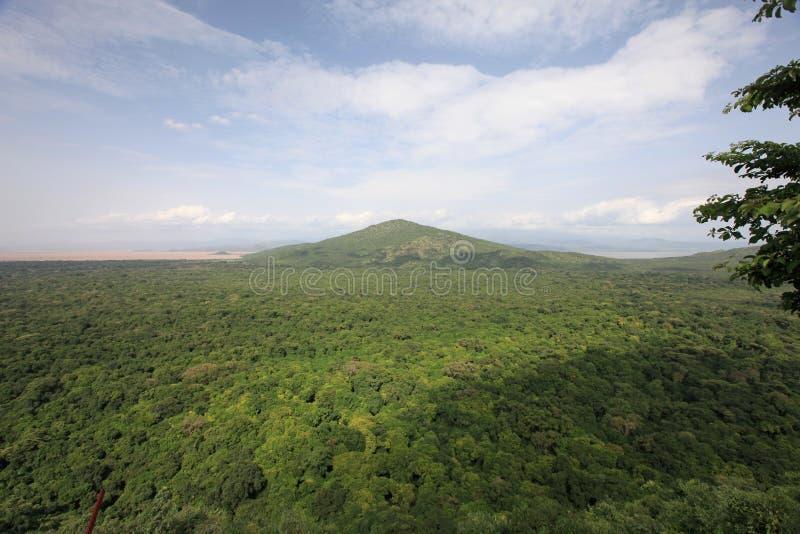 Afrykanina piękny krajobraz zdjęcie stock
