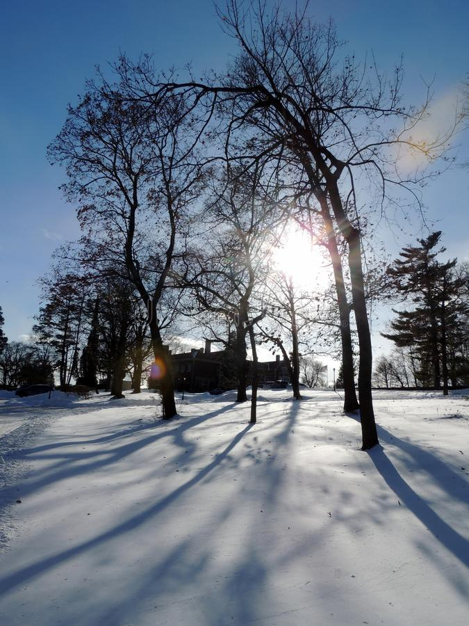Long shadows on the deep snow!. The aftermath of the blizzard of 2018 was beautiful. The unblemished snow looked like cake icing. This picture was taken 24 hours royalty free stock photos