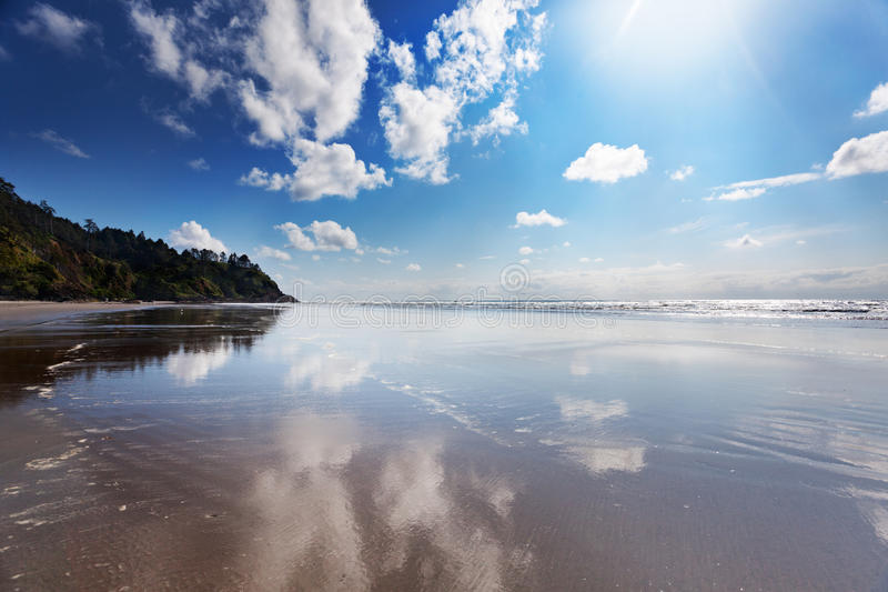 Aftermoon sun on Long Beach. Long Beach, Washgington at North Head, Cape Disappointment on a sunny Spring afternoon royalty free stock photos