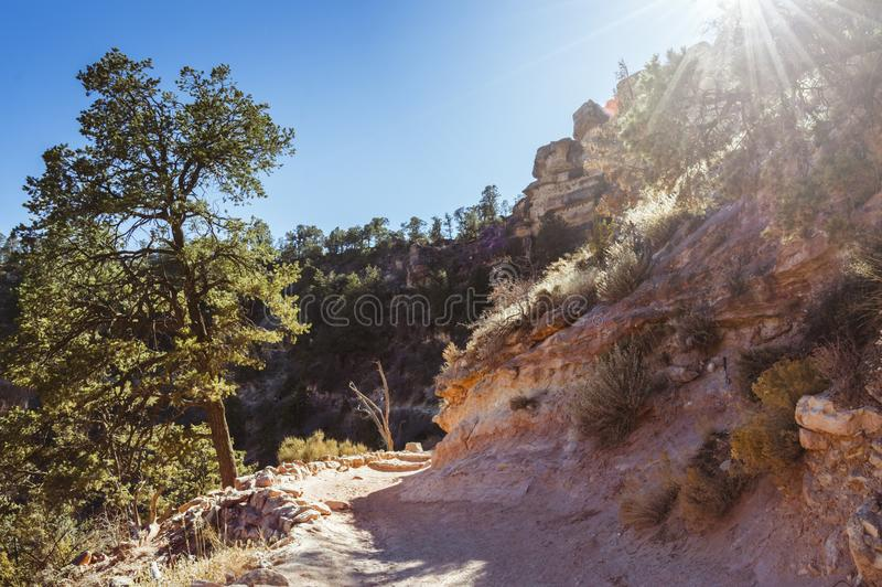 Afternoon on the Bright Angel trail in the Grand Canyon. Afternoon light on the Bright Angel trail in the Grand Canyon in mid-October stock photography