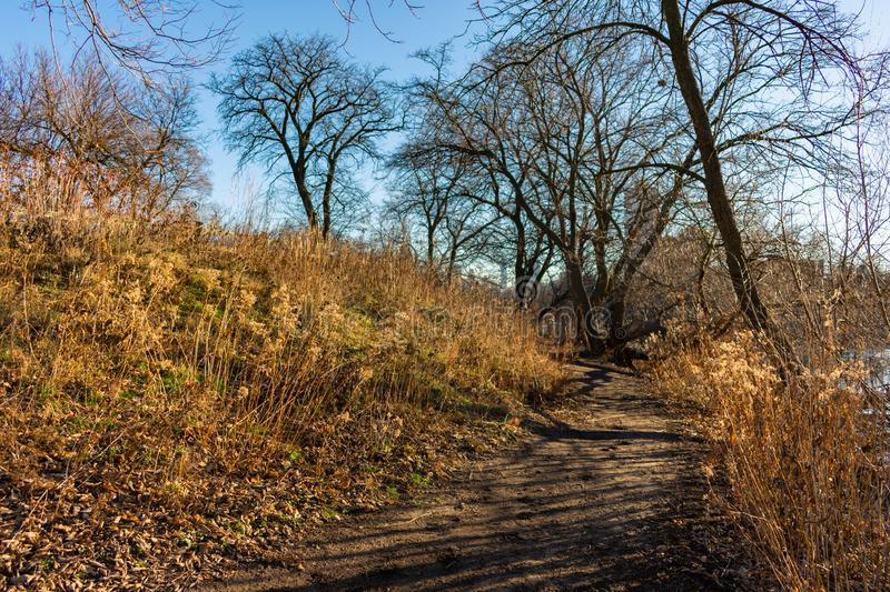 Afternoon Sun Covered Trail on a Hill next to North Pond in Lincoln Park Chicago stock image