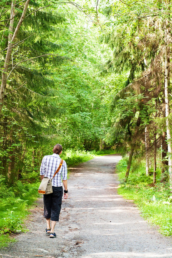 Free Afternoon Walk In The Forest Royalty Free Stock Photography - 21141997