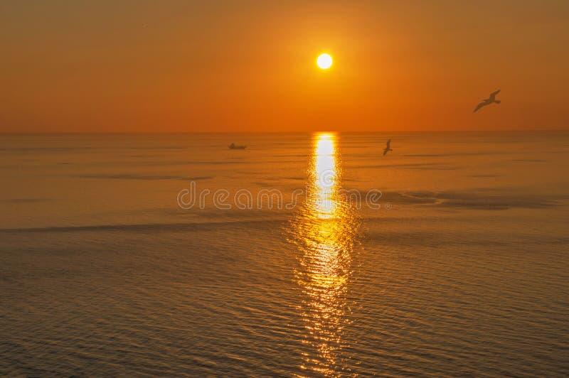 Aftnar som håller ögonen på havet och berget med guld- ljus arkivfoton