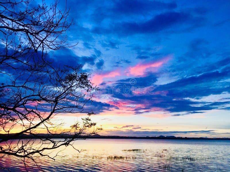 Afton och blå himmel arkivbilder