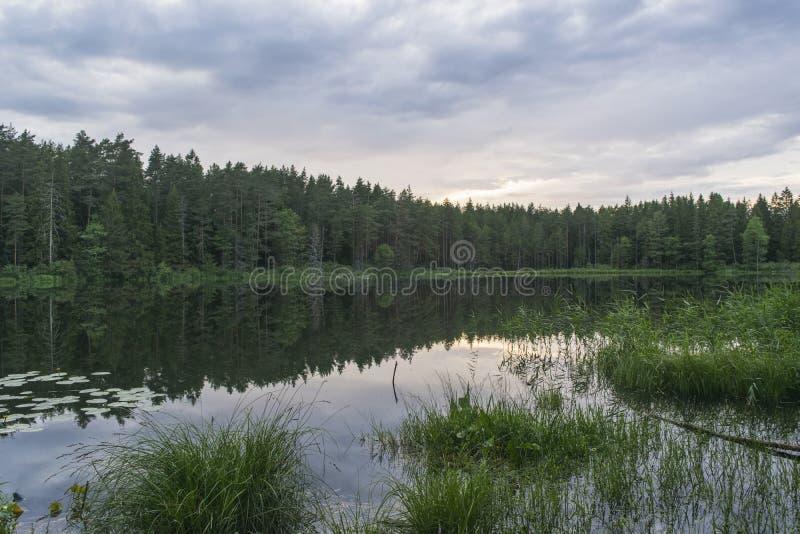 Afton på sjön royaltyfria bilder
