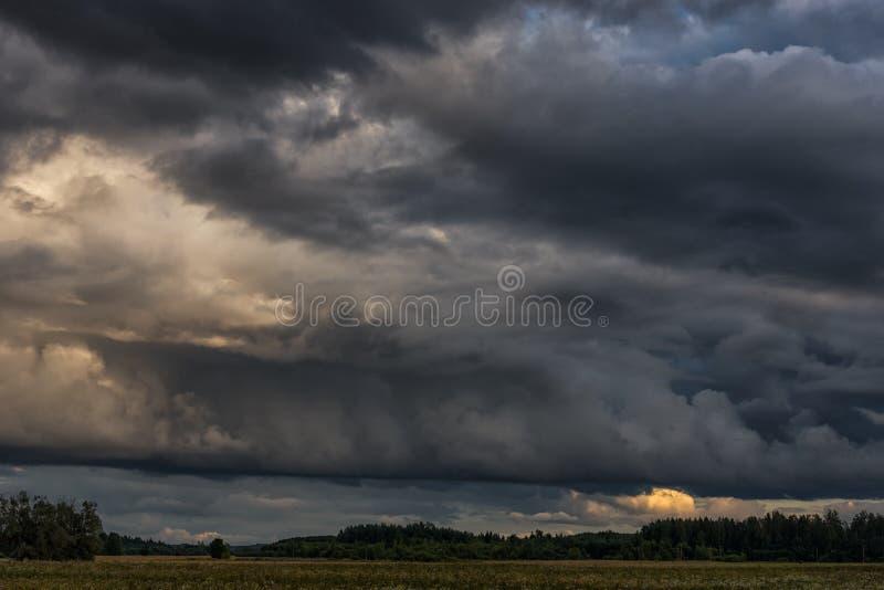 Afton stormiga molniga blåa Gray Sky Använd det som en bakgrund Skog i förgrund royaltyfria bilder