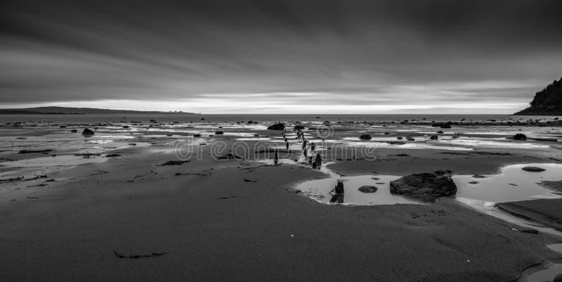 Aftonmörker fotografering för bildbyråer