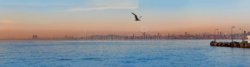 Aftonpanorama av det kust- området av Istanbul royaltyfri foto