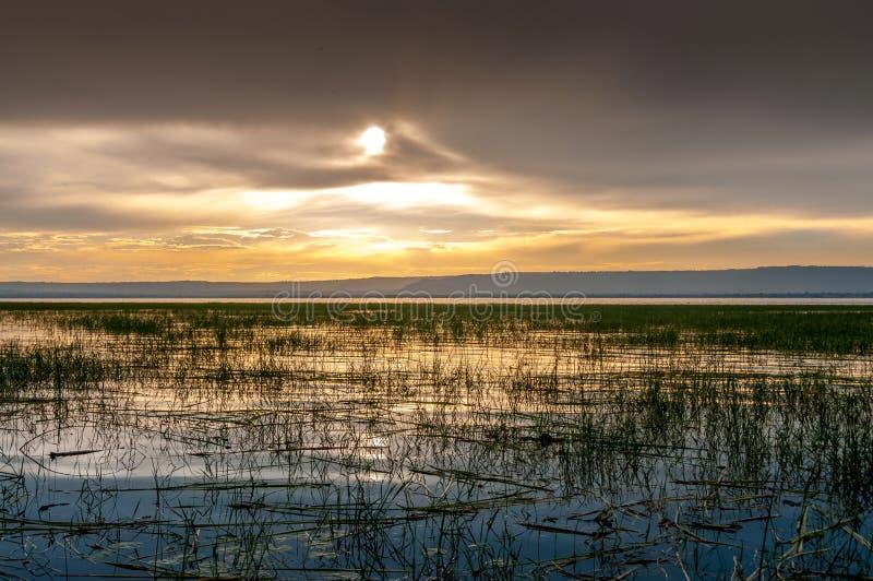 Aftonsikt på sjön Awasa arkivbilder