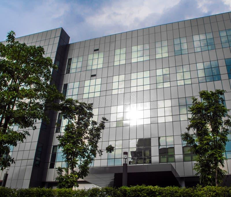 Aftonsolljus reflekterar på modern byggnad royaltyfri fotografi