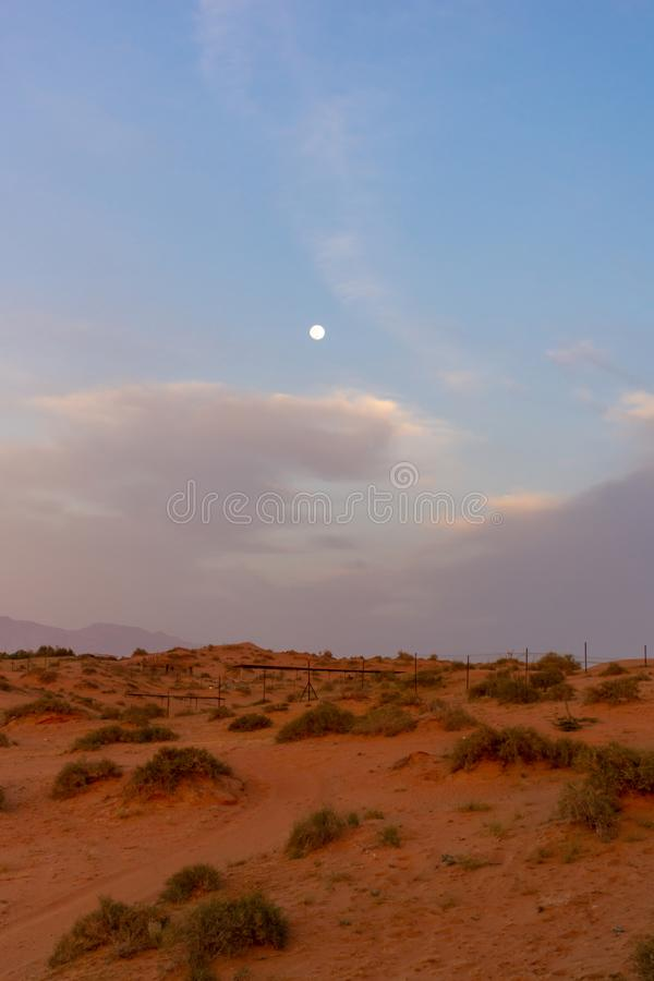 Aftonsolnedgång i ökensanddyerna av Förenadeen Arabemiraten med en blå himmel, moln och månen som ljust skiner med royaltyfri bild