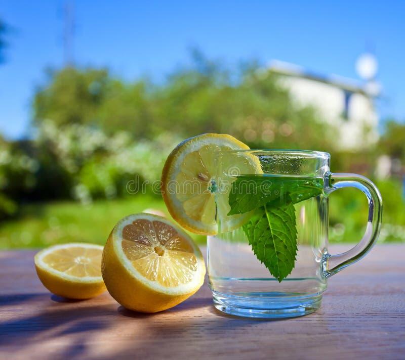 Aftreksel met citroen royalty-vrije stock foto's