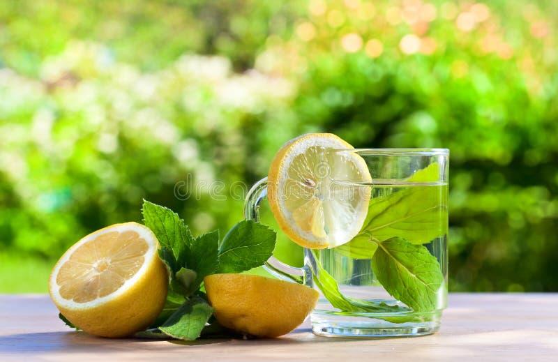 Aftreksel met citroen stock fotografie