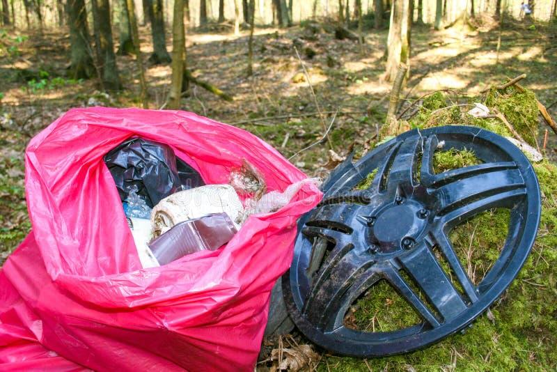 Afval, huisvuil en plastiek in een bos, verontreiniging stock foto