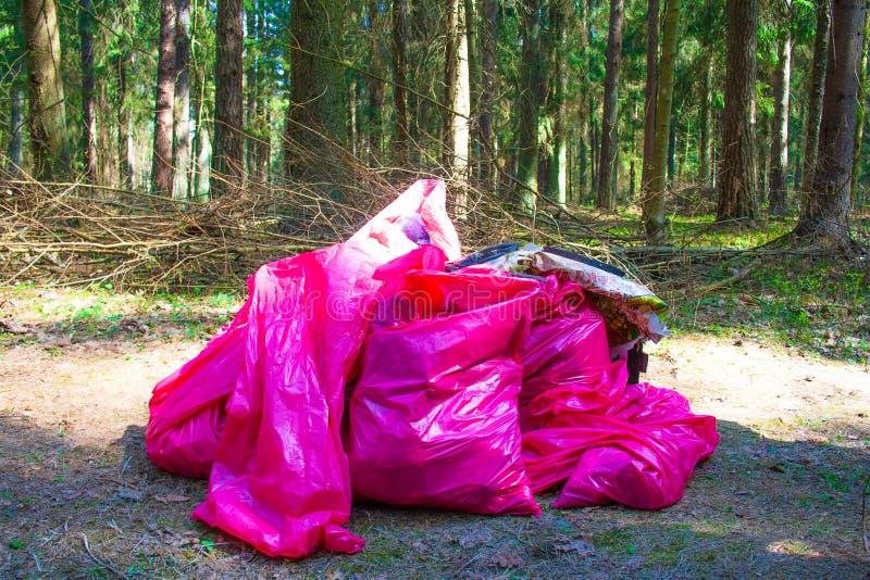 Afval, huisvuil en plastiek in een bos, verontreiniging royalty-vrije stock fotografie