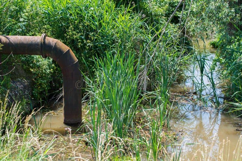 Afvalwater die de kleine roestige het ijzerpijp verontreinigen van de vijvertrog royalty-vrije stock foto