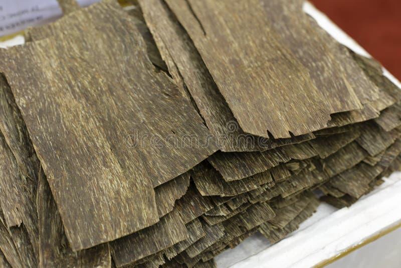 Agarwood lizenzfreies stockbild