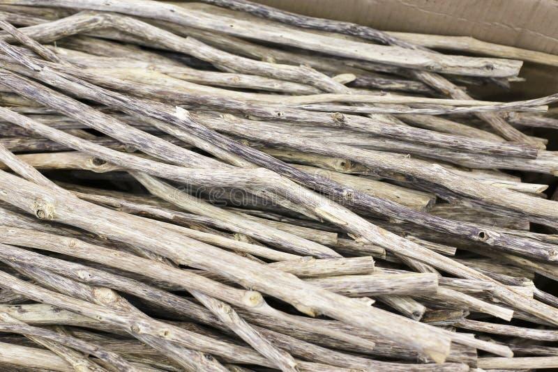 Agarwooden royaltyfri bild
