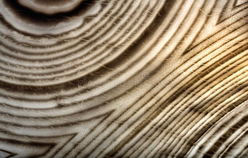 Agate dark anl light brown contrast lines. Background with contrast agate structure stock image