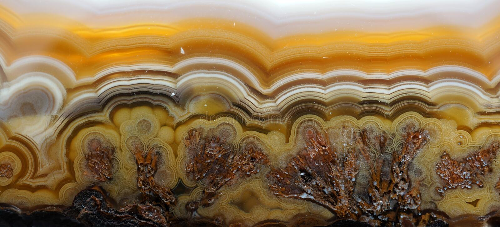 Agate pattern. A colorful banded agate with small inclusions of Sagenite on the bottom stock photos