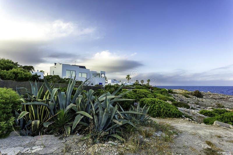Agava και άσπρες βίλες στην ακτή Cala δ ` ή, Μαγιόρκα, την Ισπανία στοκ φωτογραφίες με δικαίωμα ελεύθερης χρήσης