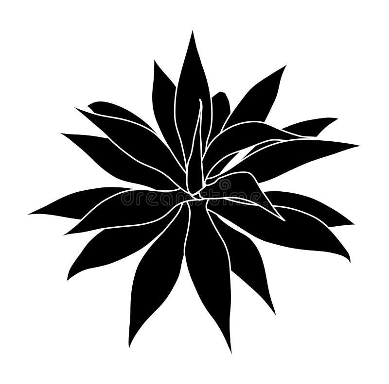 agave ilustração stock