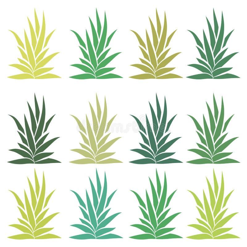 Agavenbuschsatz lokalisiert auf weißem Hintergrund Aloe Vera stock abbildung