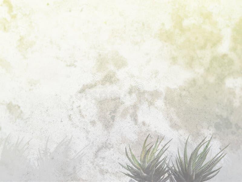 Agawy i cementu tło obraz royalty free