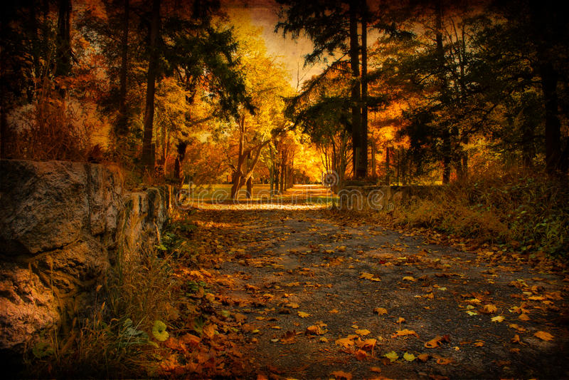 Aged Autumn Path stock photos