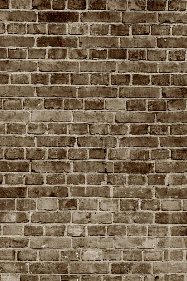 Aged brick wall royalty free stock images
