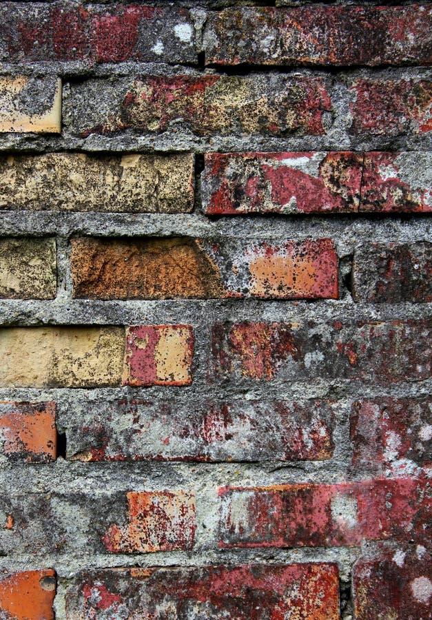 Aged Brick Wall Texture Royalty Free Stock Image