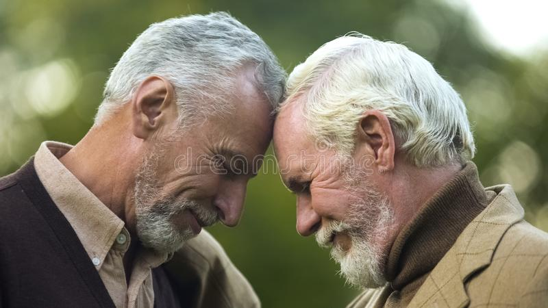 Aged brothers touching heads, family connection, friendship support, buddy royalty free stock photography