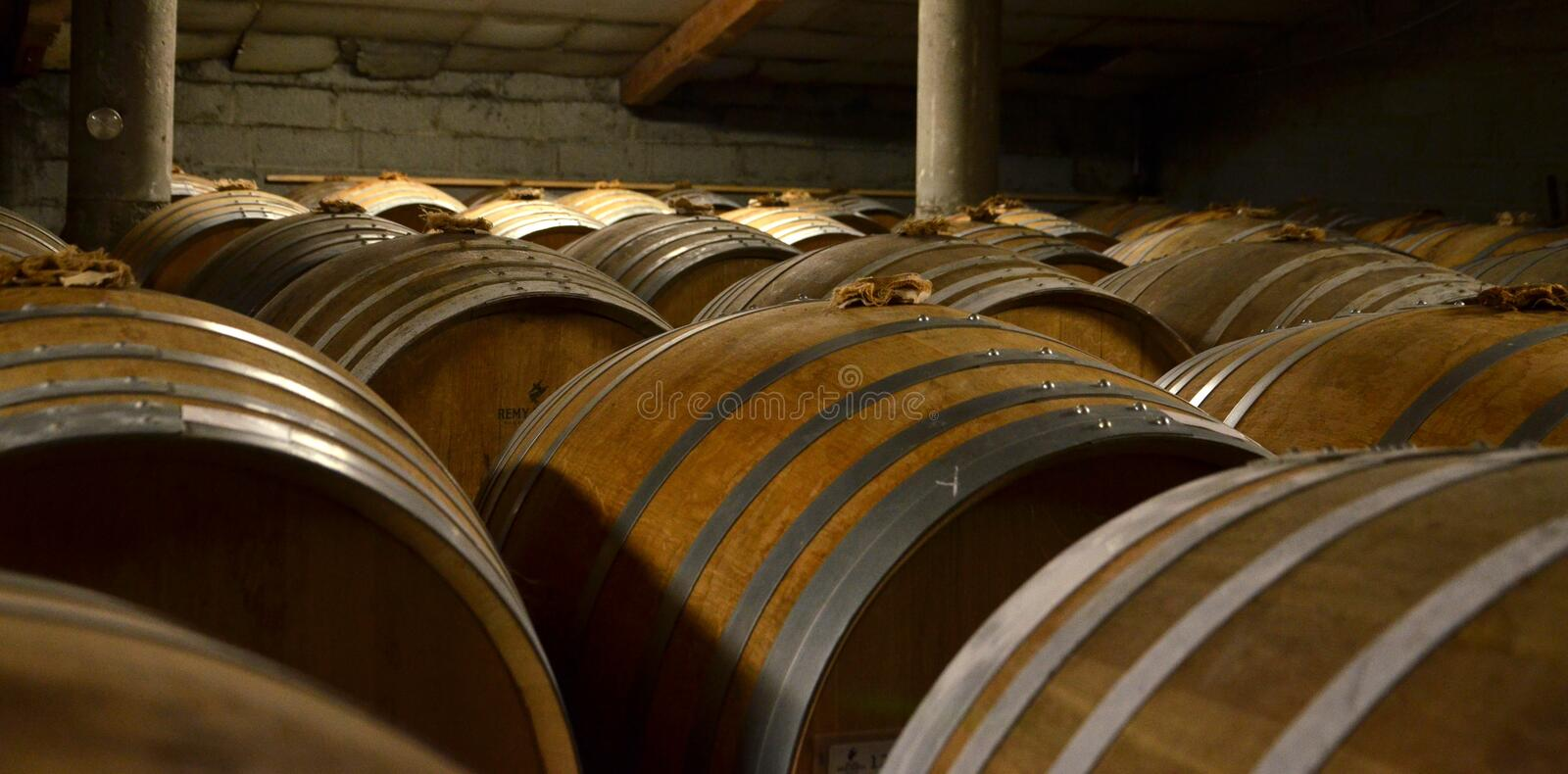 Aged cognac barrels. In a private distillery in France stock image