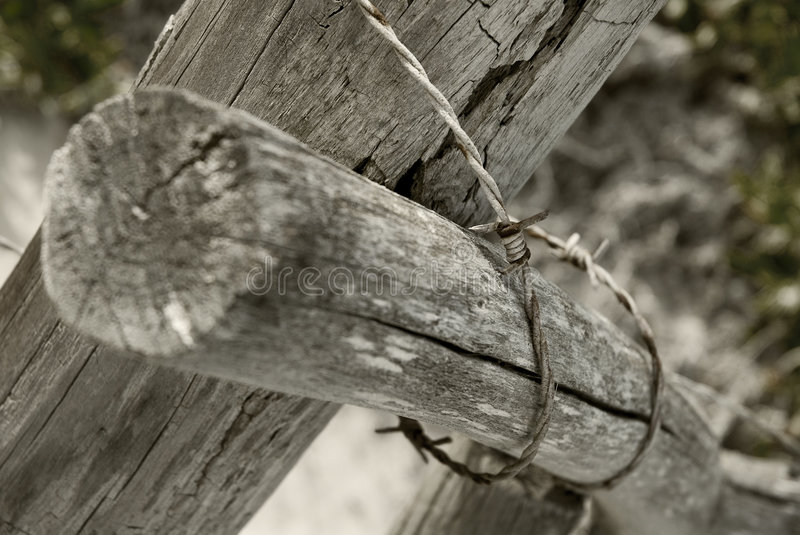 Aged fence royalty free stock images