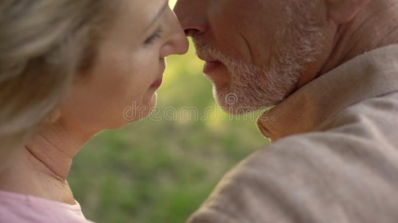 Aged husband and wife kissing closeup, love feeling, married couple togetherness. Stock photo royalty free stock images