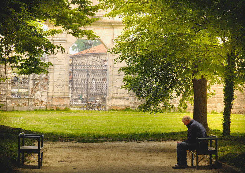 Aged man loneliness park alone royalty free stock image