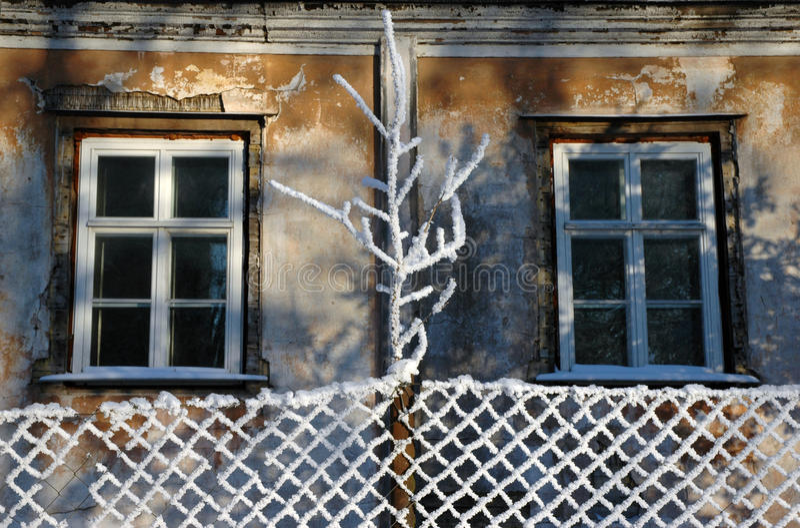 Aged windows at winter stock photo