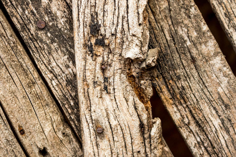 Aged wood fence royalty free stock photography