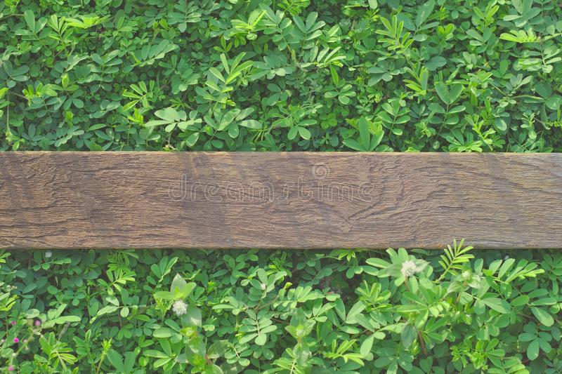 Aged wood plank on green grassy background.Old wooden plates on the lawn Background, lawn decoration equipment.Scissors to cut. Grass, trowel steel, trowel to stock photo