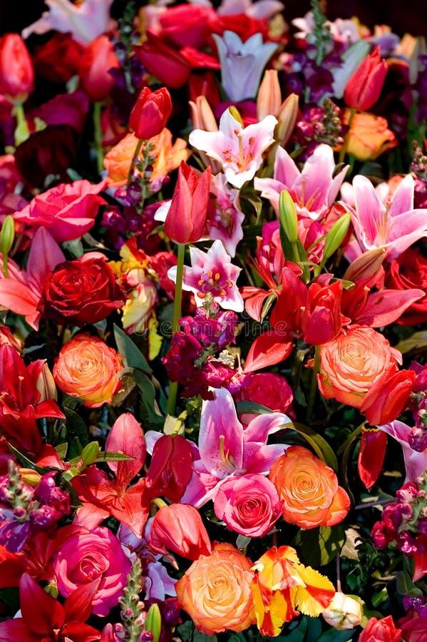 Agencement de fleur photo libre de droits